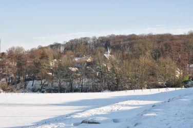 bethemont-la-foret-sous-la-neige-002